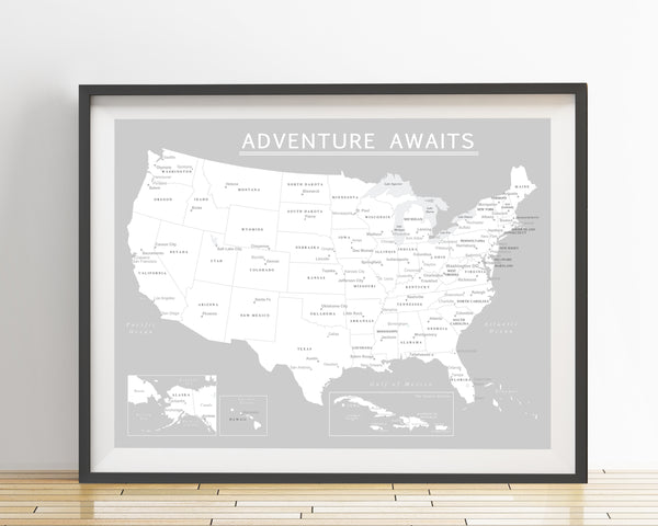 USA Map Poster - Light Gray