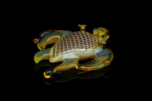 Buck Glass x JoeP Turtle
