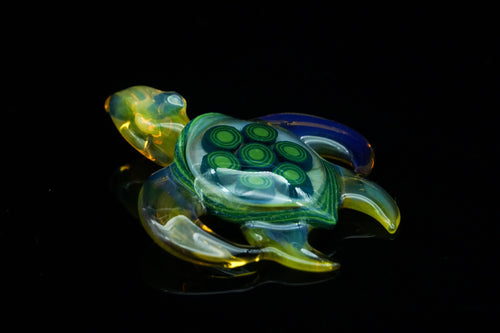 Buck Glass x Darby Turtle