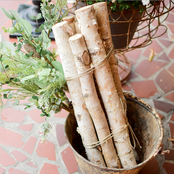 How to Style: Birch Logs