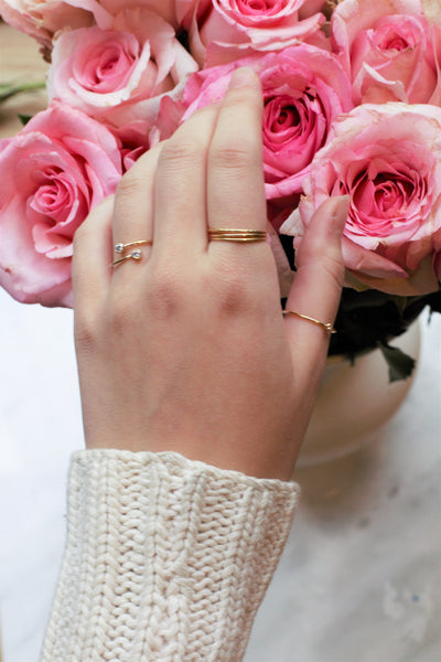 The Turtle Dove Gold-filled Ring