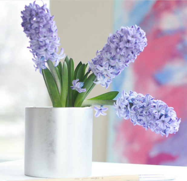 New Art and My Hyacinth Obsession
