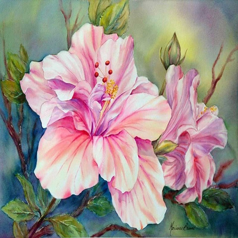 5d Diy Diamond Painting Pink And White Hibiscus Flowers Craft Kit