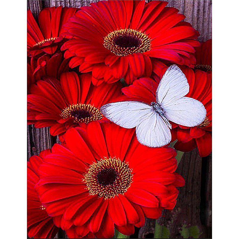 5D DIY Diamond Painting Red Daisies White Butterfly - craft kit