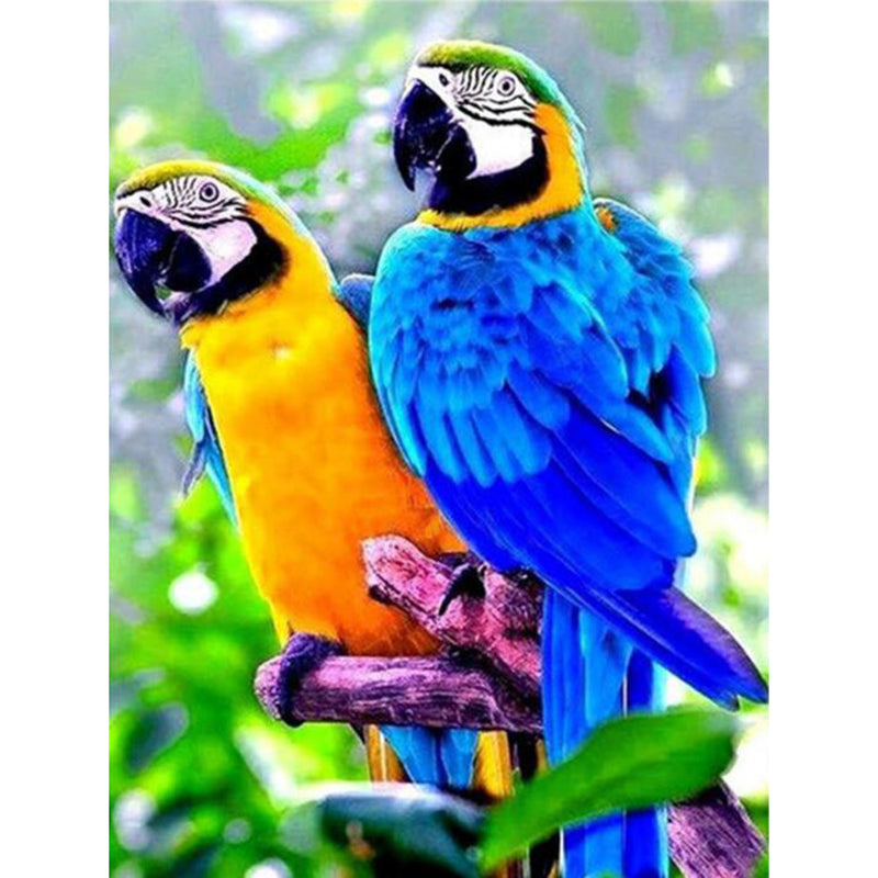 5D DIY Diamond Painting Blue and Gold Macaw Pair Photo - craft kit