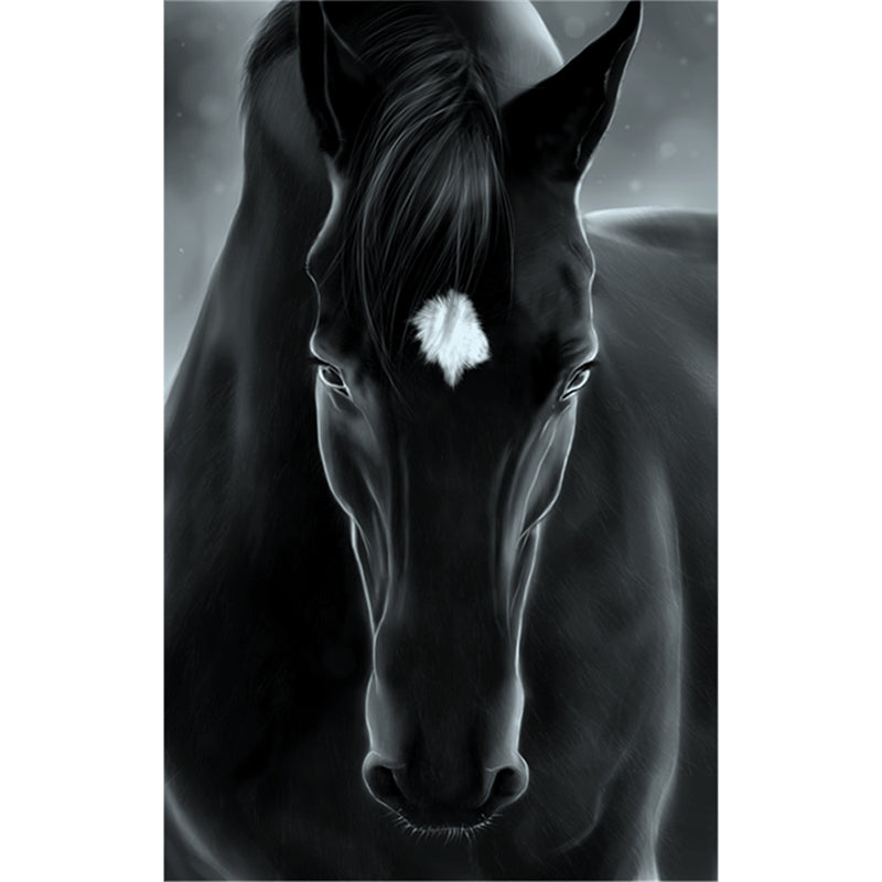 5D DIY Diamond Painting Black Stallion Gaze - craft kit