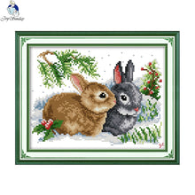 DIY Counted or Stamped Cross Stitch Two Rabbits - thread craft kit