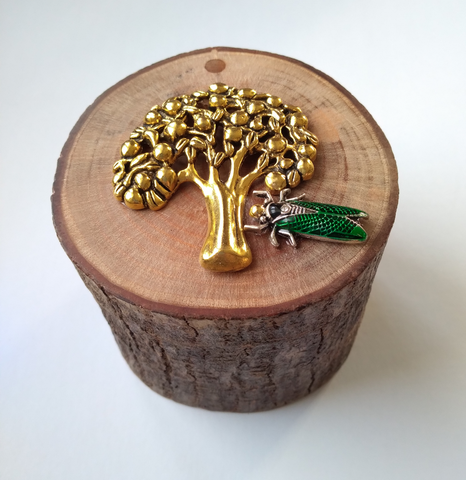 Cicada on a Tree of Life Mahogany Branch Container/Accent