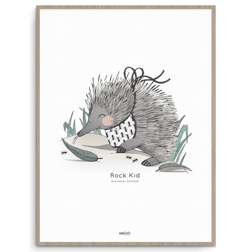 Aussie Rock Kid Echidna Nursery And Kids Room Wall Art