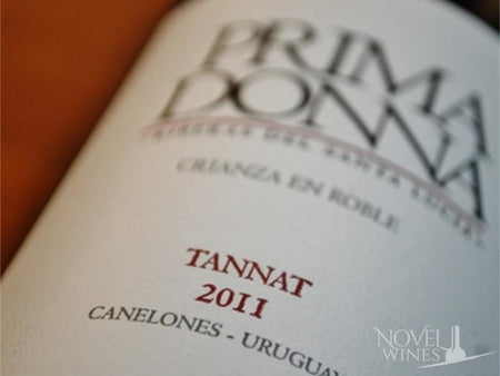 Introducing Uruguayan Tannat red wines - Novel Wines