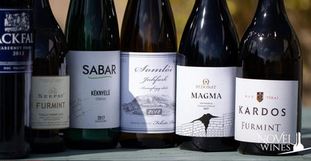 Discover these stars of Hungarian wine