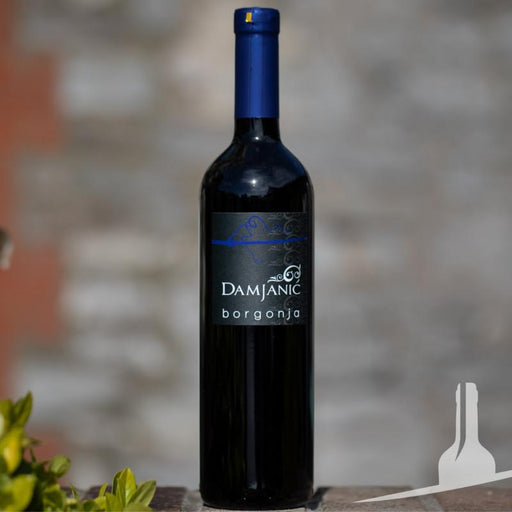 Damjanic Borgonja family winery from Croatia