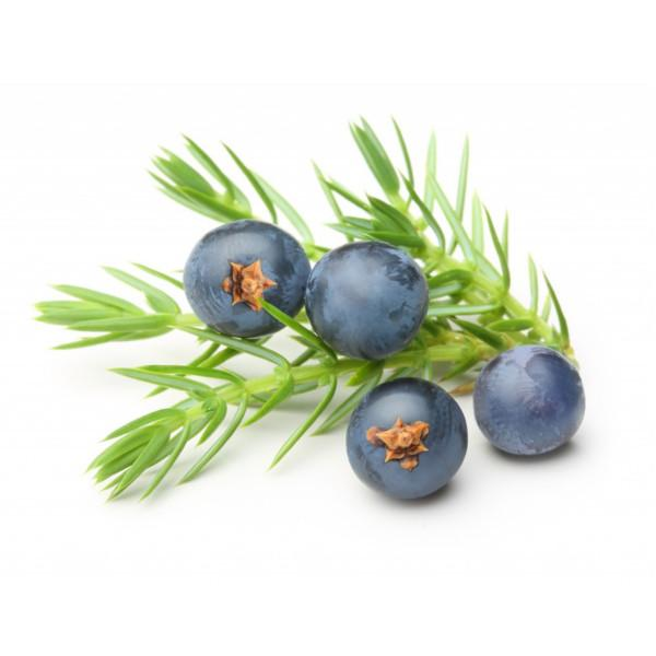 Juniper berry flavours in the Foxdenton Damson Gin
