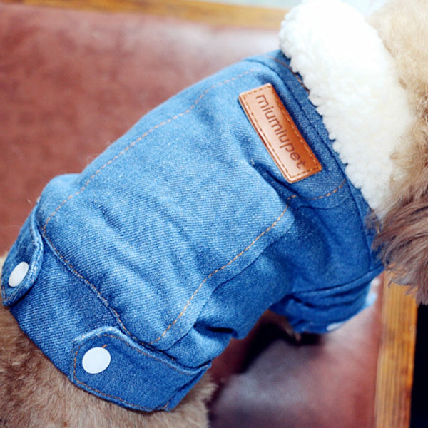 White Fur Collar Denim Jacket For Shih Tzu