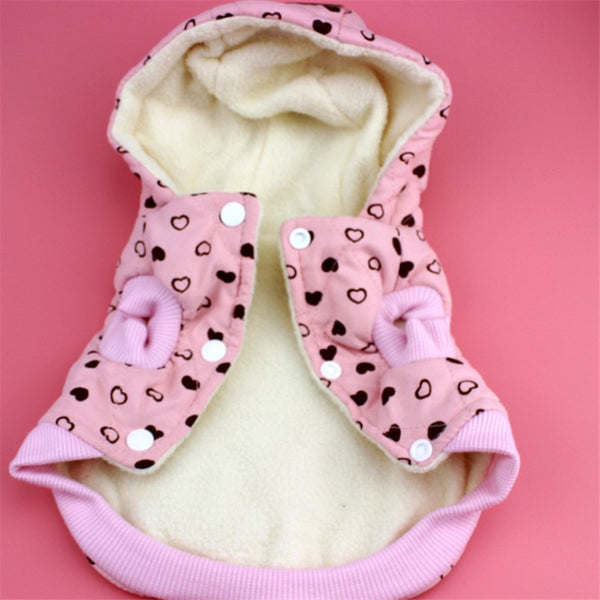 King Teddy Shih Tzu Hooded Coat