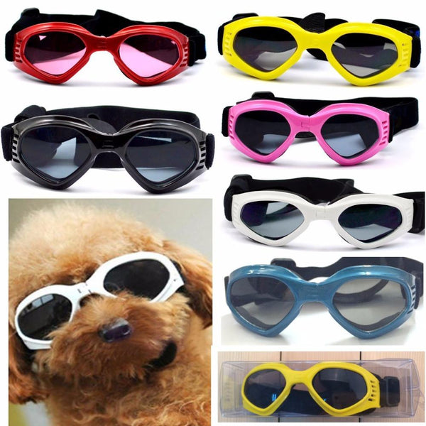 Shih Tzu Sunglasses