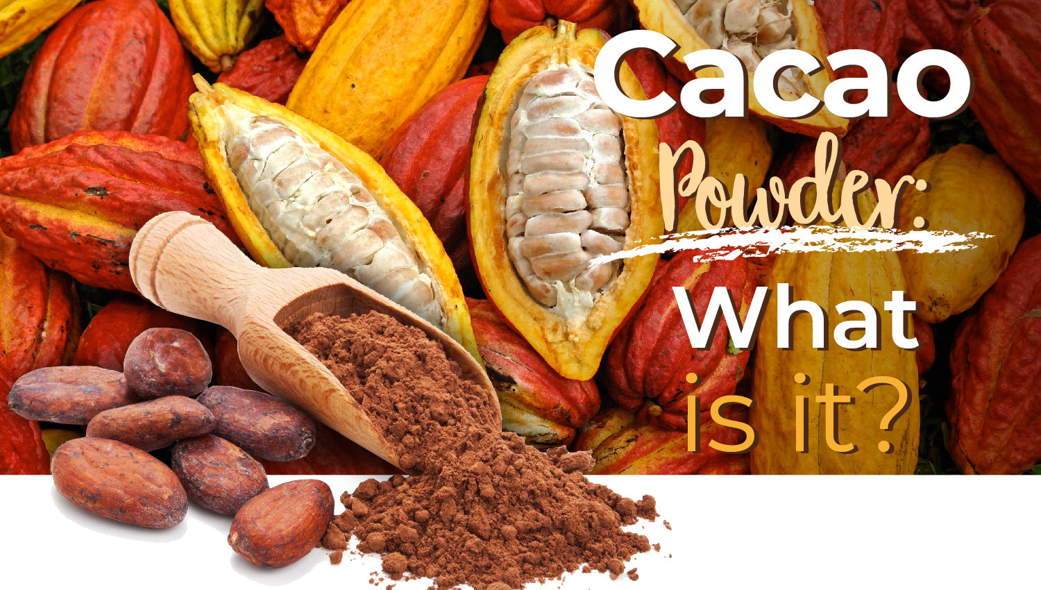 Cacao Powder - What is it? | Cocao vs. Cocoa | Alovitox Superfoods