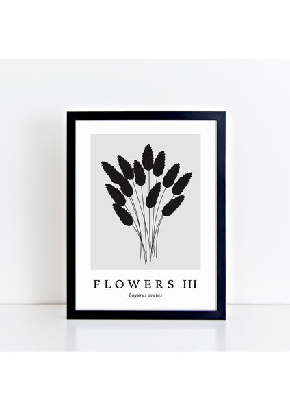 Flowers III Latin - Grey Print