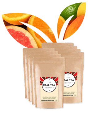 Fruit Blends Selection Pack