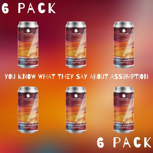 You Know What They Say About Assumption 6-pack - 6 x 440ml cans 8.2% Biscoff Porter