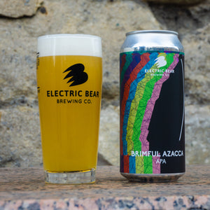 Mixed Pale Case No.9 - Free Delivery on 12 Mixed Cans of Our Freshest Pale Ales