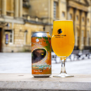 Nobody Knows Where The Lizard Gose 4% Mango Gose 440ml Can