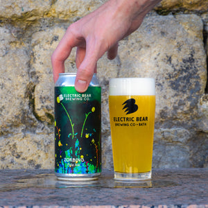 Mixed Pale Case No.7 - Free Delivery on 12 Mixed Cans of Our Freshest Pale Ales