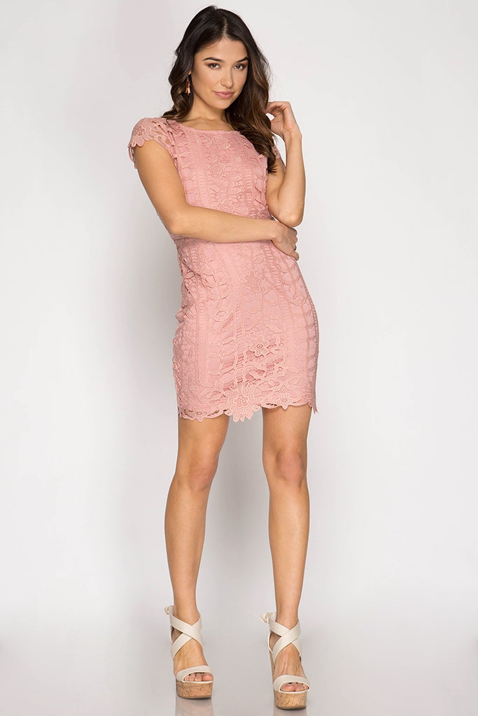 Stella Lace Dress with Open Back in Rose
