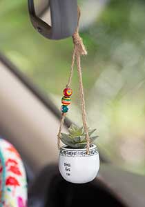 "Hanging Succulent in ""Bless This Car"""