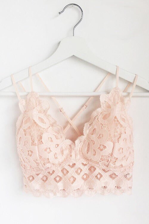 Double Strap Scalloped Lace Bralette in Blush