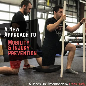 Are You Training Mobility or Just Mobilizing?