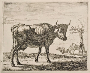 Adriaen van de Velde, Old Master Print 1650-1672 Three Cows - appleboutique-com