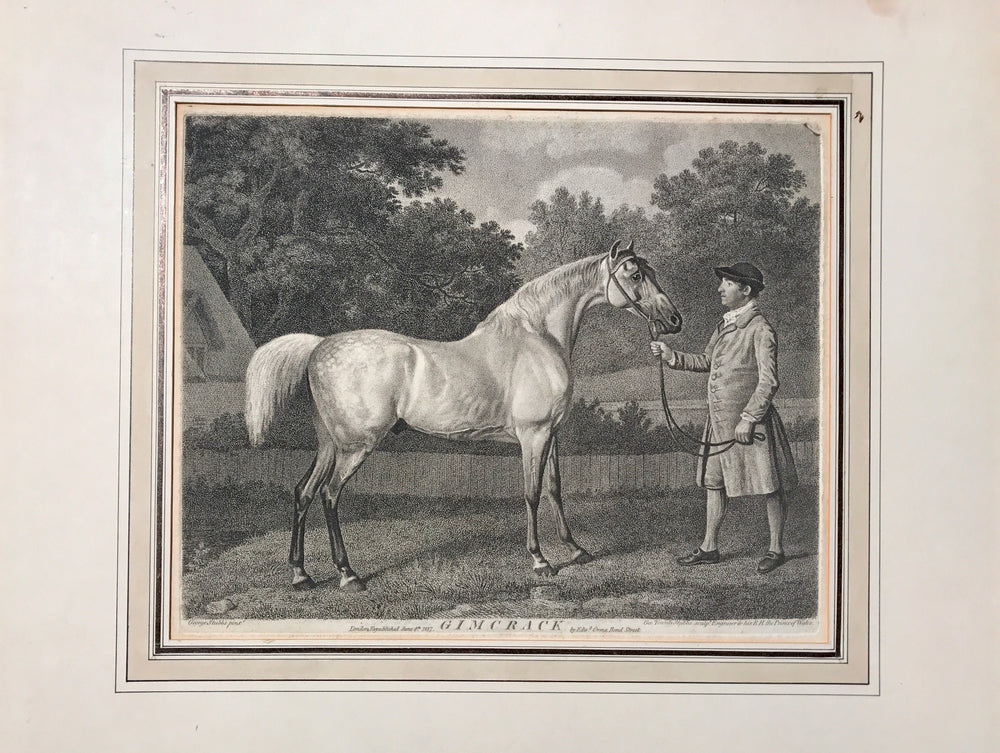 "George Townly Stubbs after George Stubbs ""Gimcrack"""