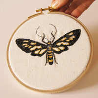 Embroidered Hoop Art Clearwing Tiger Moth Entomology Home Decor
