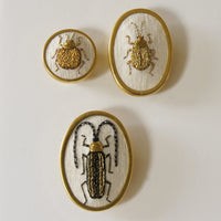 Golden leaf beetle hand embroidered brooch entomology jewelry