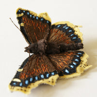 Fiber Art Insect Brooch Mourning Cloak Butterfly Entomology Jewelry