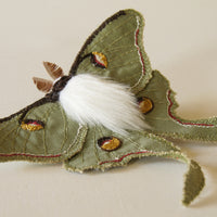 Brooch Luna Moth Fiber Art Insect Entomology Jewelry