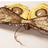 Fiber Art  Eyespot Moth brooch yellow and brown