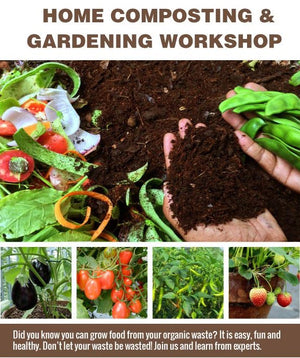 Home Composting & Growing - Stonesoup Shop