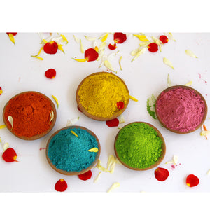 Natural Holi Colours: 5-colour combo - Stonesoup Shop
