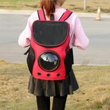 Cat's Backpack , with a window Backpack - Grr Cats