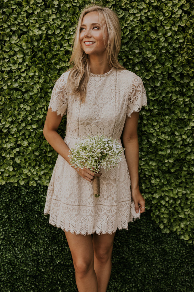 Chelsey Lace Dress