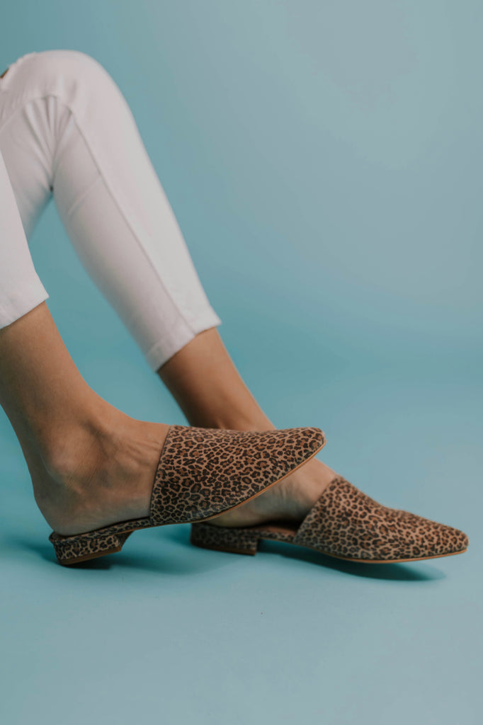 Leopard Print Shoes | ROOLEE