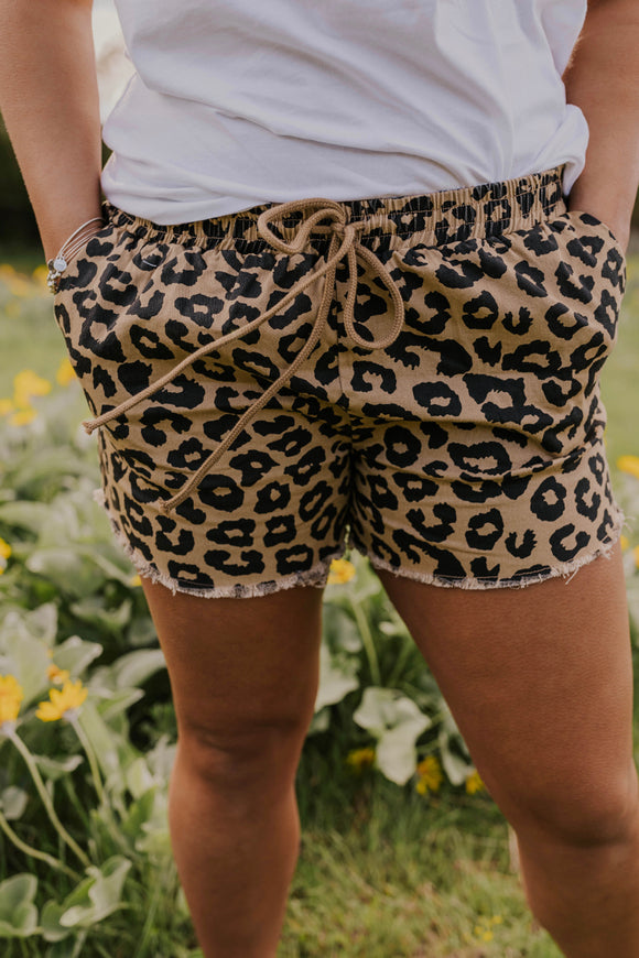 Leopard Print Shorts | ROOLEE