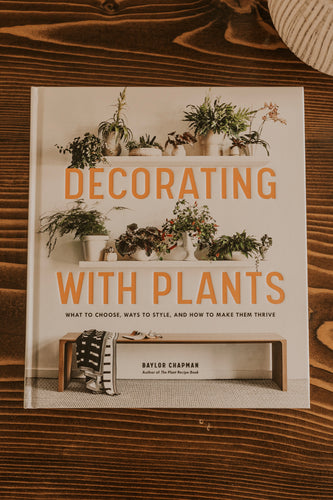 How to Care for Plants | ROOLEE