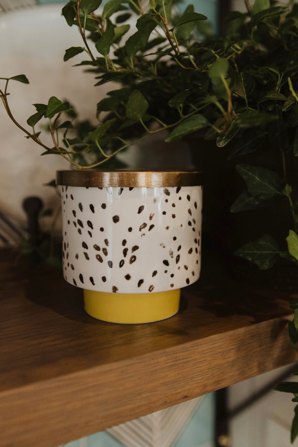Scented Candle | ROOLEE