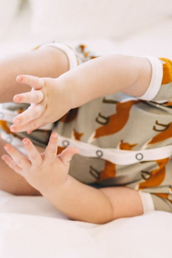 Snap Up Front Onesie For Babies | ROOLEE Kids