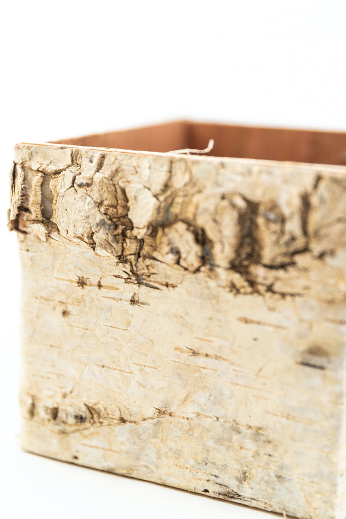 Wooden birch boxes | ROOLEE