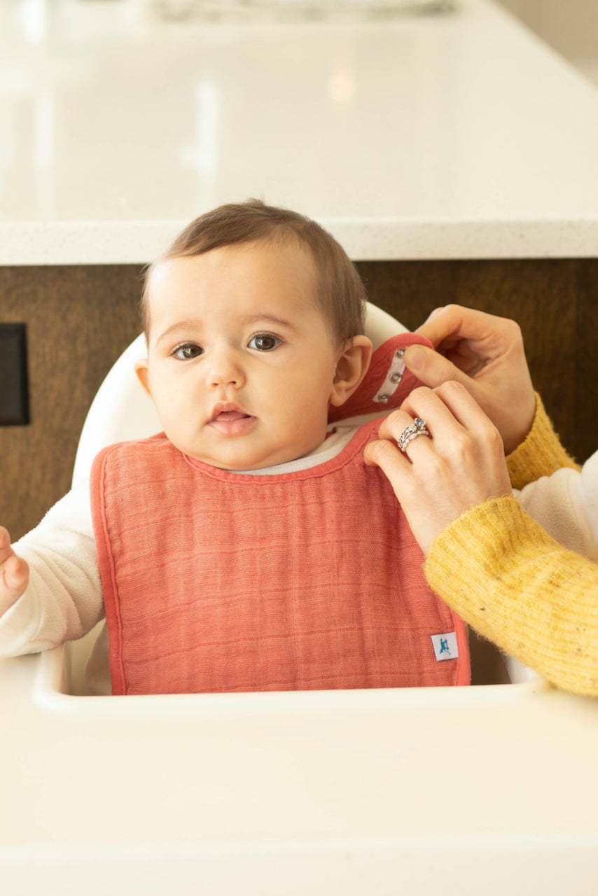 Baby bibs for black friday | ROOLEE