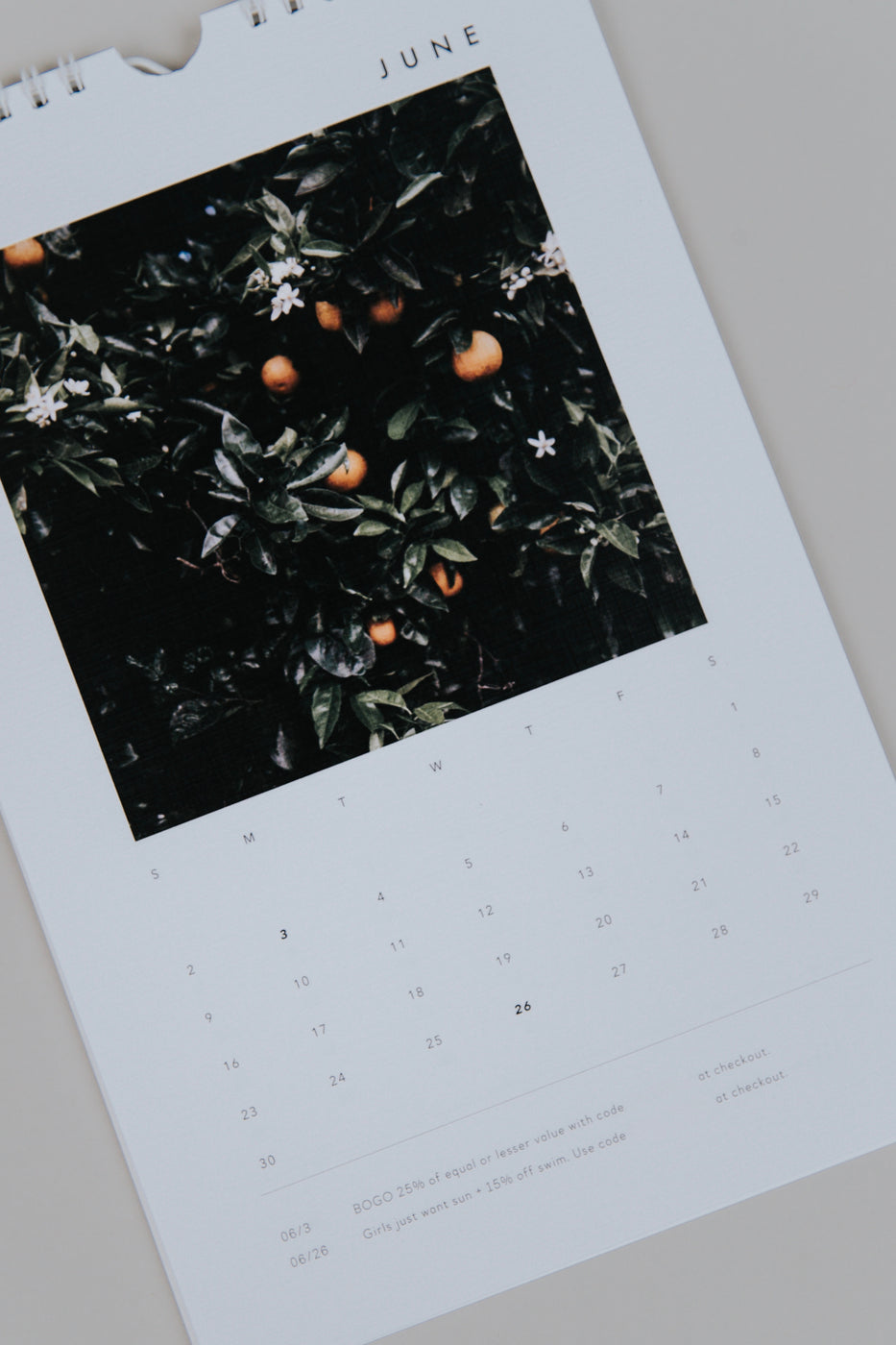 Collaborated ROOLEE 2019 Calendar | ROOLEE